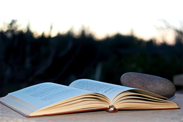 หนังสือวรรณกรรม